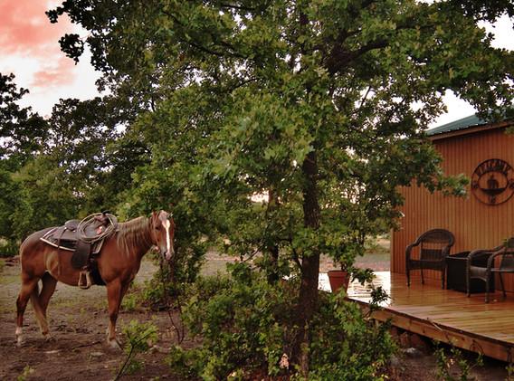 Shawnee at cabin