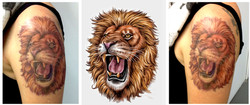 TATOO LION II.jpg