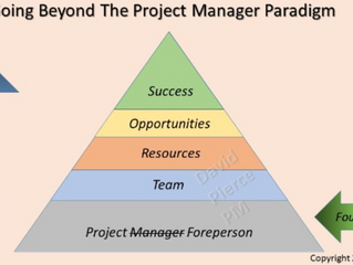 Going Beyond The Project Manager Paradigm