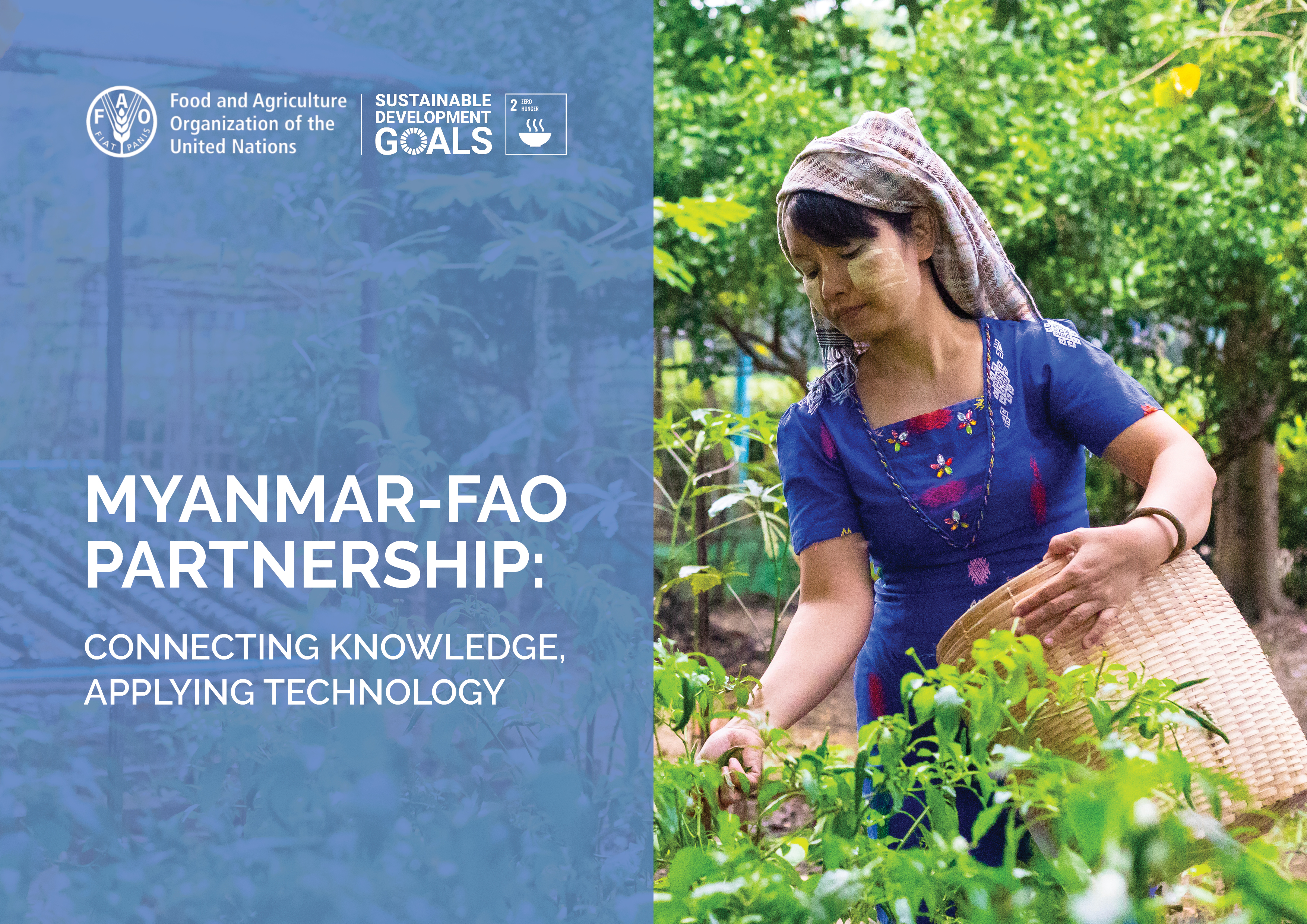 FAO Myanmar - World Food Day 2019