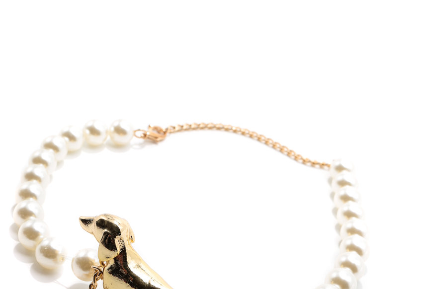NODRESS / Dog Pearl Choker / Gold