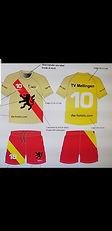 Sponsoring Unihockey Mellingen Junioren.