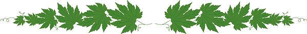 shouhin_leaf.jpg