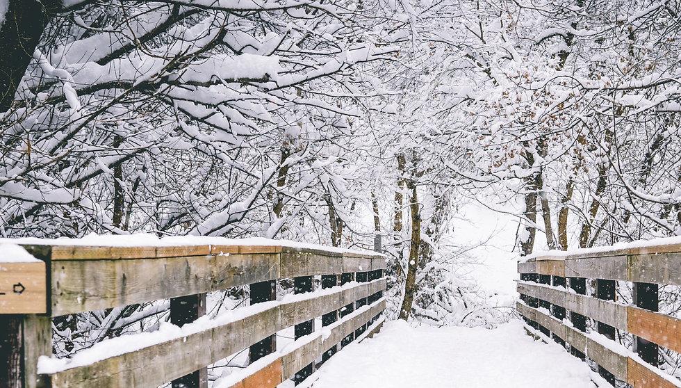 Winter_edited.jpg