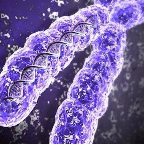 Исследование кариотипа абортивного материала молекулярными методами с исследован