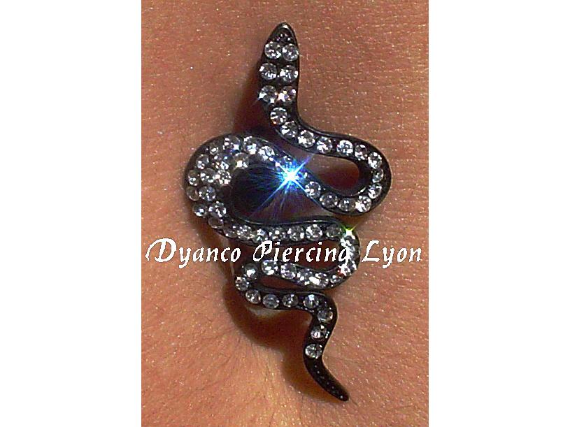 dyanco piercing lyon 96.jpg