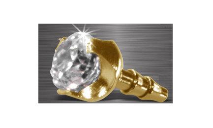 Accessoires clipsable acier 316L doré