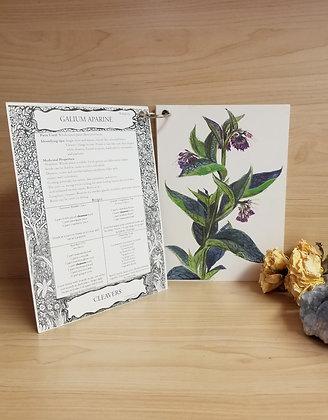 Herbal Flashcard Deck