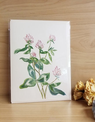 Red Clover Card