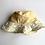 Thumbnail: Ducklings Baby Bucket Hat