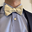 Thumbnail: The Bouquet Bow Tie