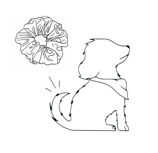 Scrunchie to Match your Dog Bandana!