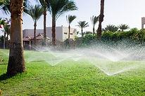 New Irrigation.jpg