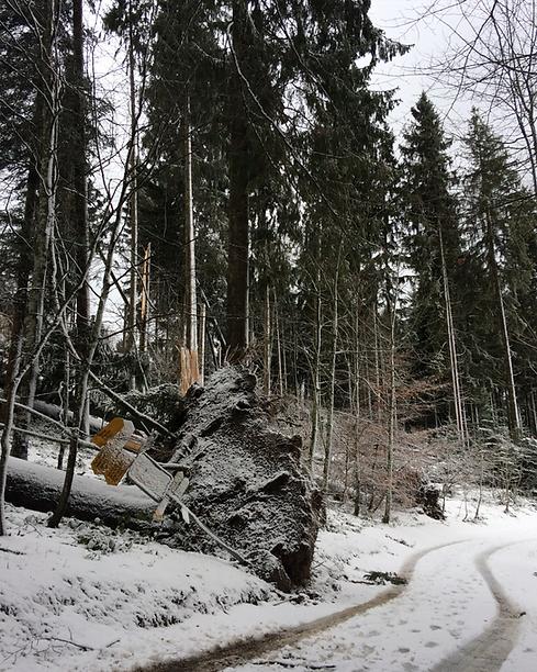 Wegweiser nach Sturm2_small.png