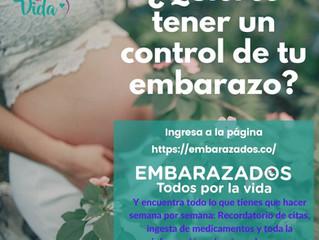 ¿Quieres tener un control de tu embarazo?