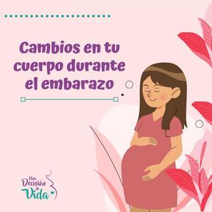 Cambio en tu cuerpo durante el embarazo