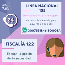 Línea nacional 155