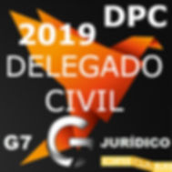 delegado civil 2019.jpg