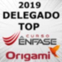 DELEGADO TOP 2019.jpg