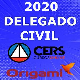 CERS DELEGADO 2020.jpg