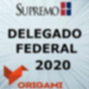 DELEGADO FEDERAL 2020.jpg
