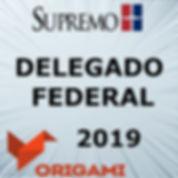 DELEGADO FEDERAL 2019.jpg