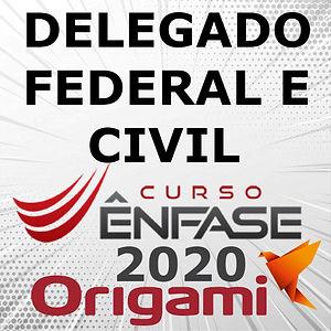 DELEGADO 2020 ENFASE.jpg