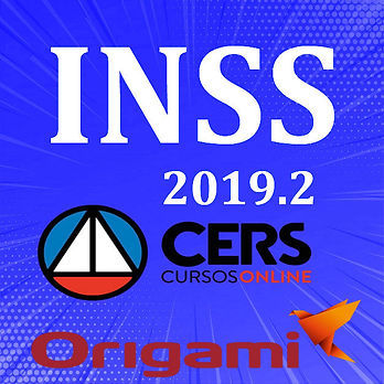 INSS 2019 2.jpg