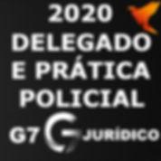 DELEGADO E  Pratica Policial 2020 G7.jpg