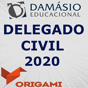 DELEGADO 2020.jpg