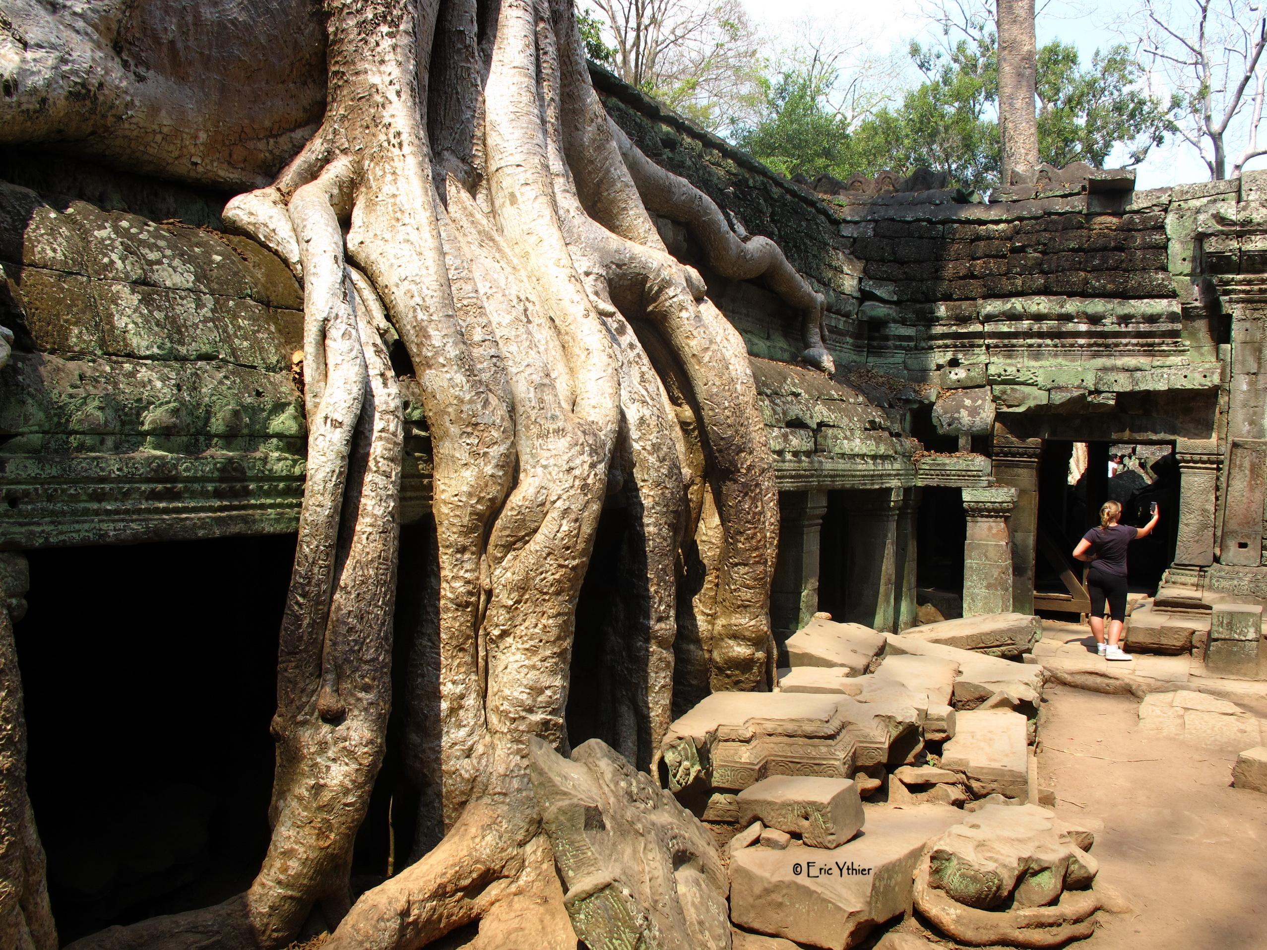 Le Ta Phrom - Angkor - Cambodge