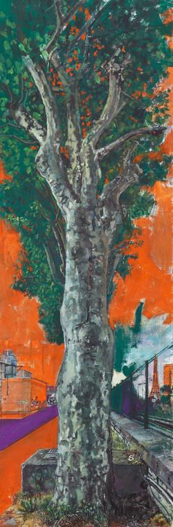 L'arbre parisien
