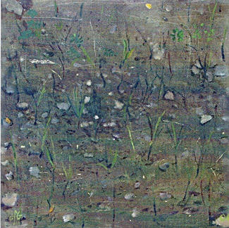 Small Grass Field - Marc GOLDSTAIN 2004 - Oil On Canvas - Country - Agriculture - Contemporary Painting