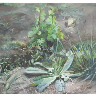 Dandelion And Bad Seeds - 73x92cm - Marc GOLDSTAIN 2004 - Oil On Canvas - Durban - Country - Agriculture - Vineyard - Contemporary Painting