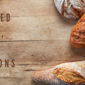 We Need Bread, Not Opinions | Faith Like Birds | Part LXII