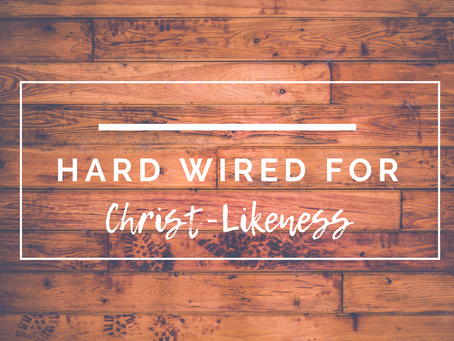 Hard Wired For Christ-Likeness