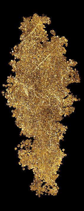 Splotch_golden_3.png