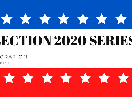 ELECTION 2020 SERIES - IMMIGRATION