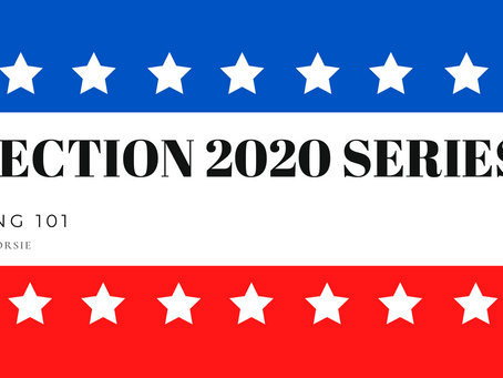 ELECTION 2020 SERIES - VOTING 101