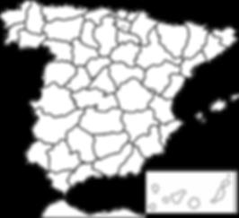 Bioslimming en España