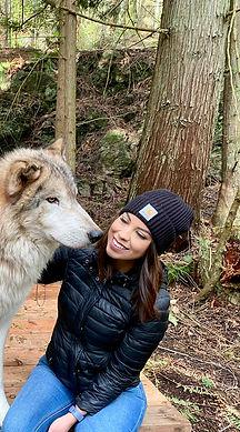 wolf in anacortes.JPG