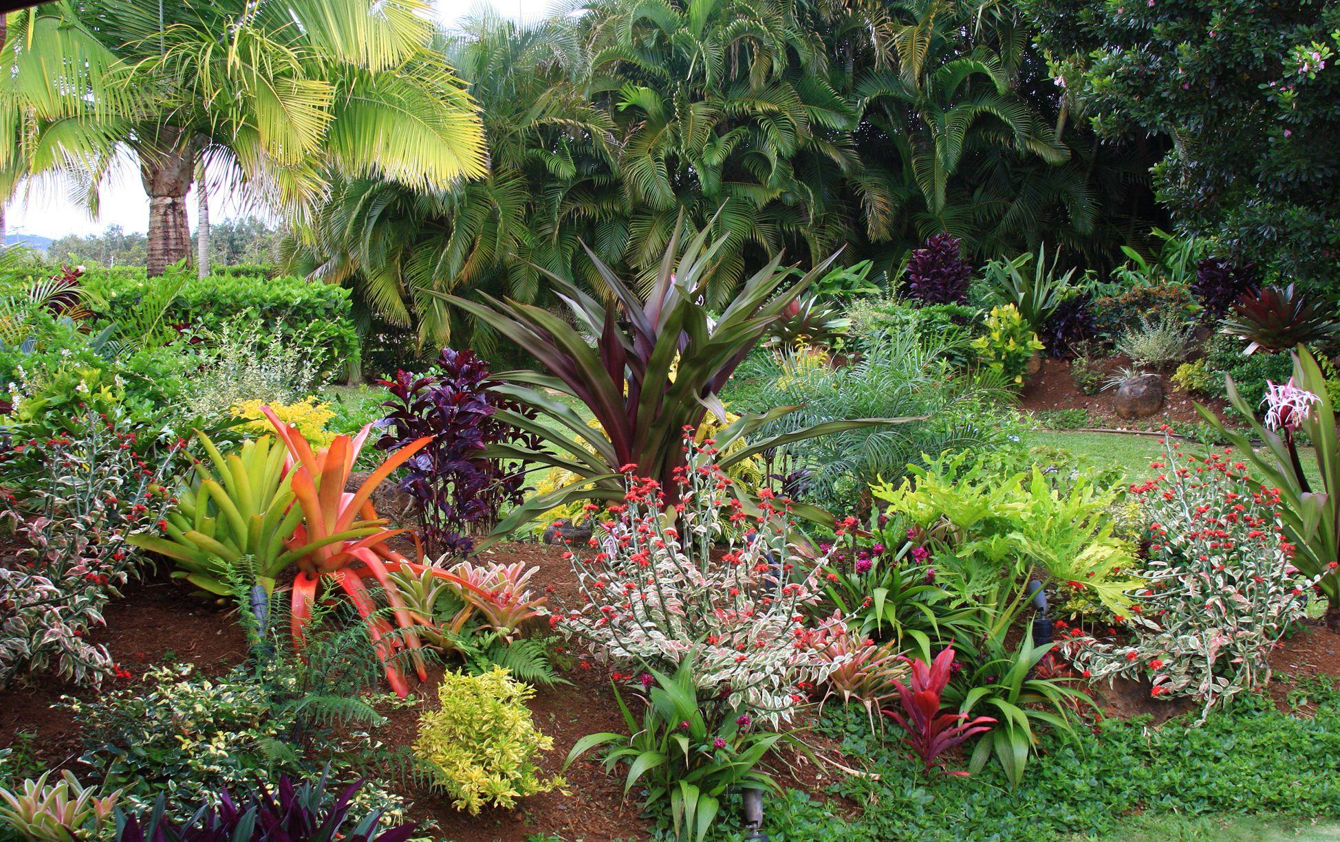tropicalhawaiiangarden-58386cdd5f9b58d5b