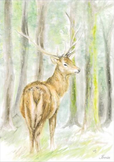 Carte A6 - cerf hiver