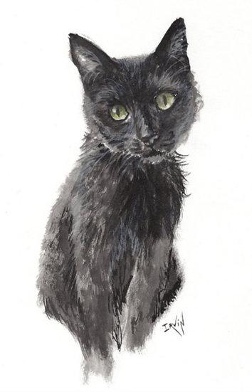 Carte A5 - chat noir
