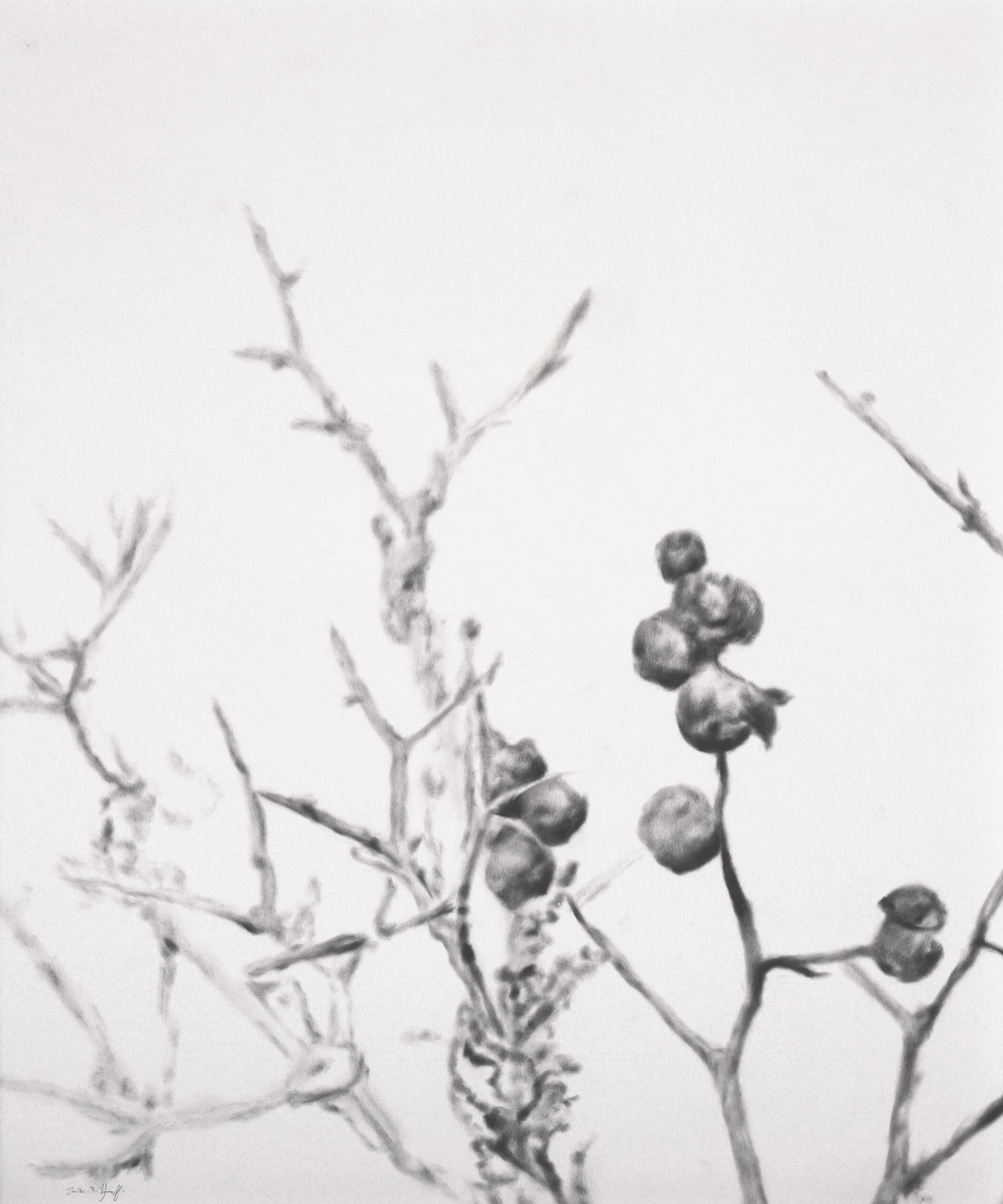 """Thorns"""