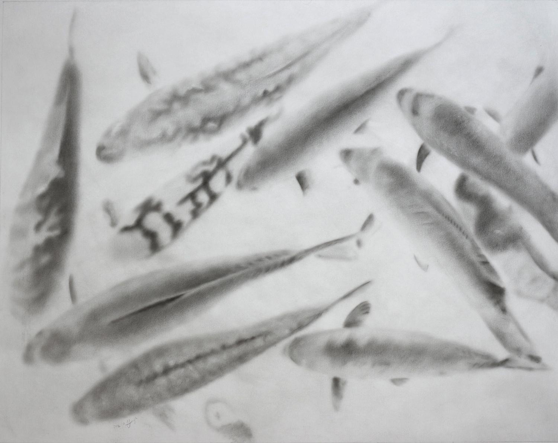"""Invert fish"""