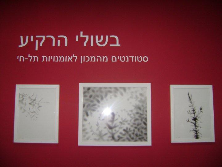 המוזיאון לצילום תל חי