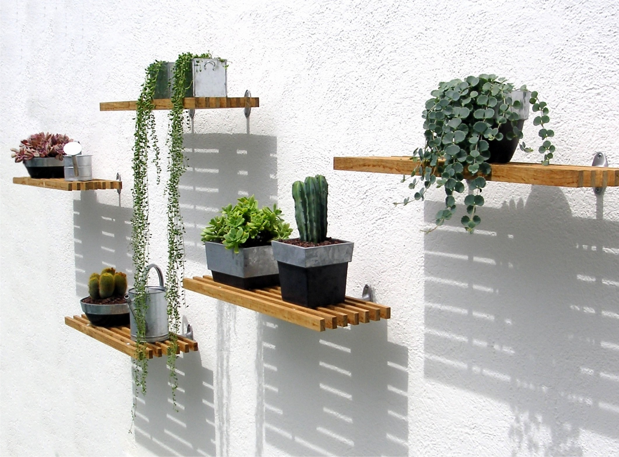 Teak Indoor/Outdoor Shelf