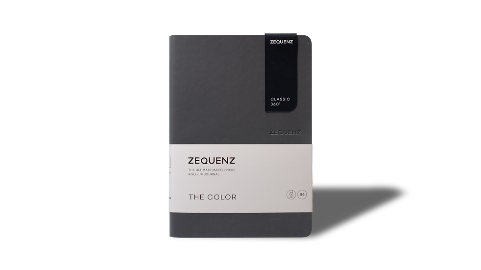 ZEQUENZ The Color B6 Storm
