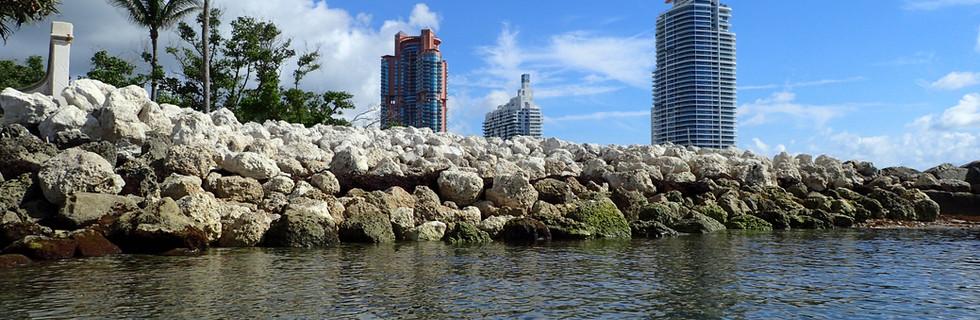 Fisher Island Shoreline   Fisher Island, FL